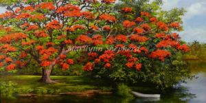 Poinciana and Boat